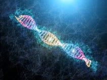 Ejemplo de neón brillante de la DNA ejemplo médico del filamento de la DNA con la llamarada ligera Concepto genético de la cienci imagenes de archivo