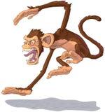 Ejemplo de salto enojado del mono de la historieta del vector Imagen de archivo libre de regalías