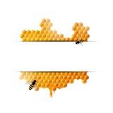 Panales y las abejas