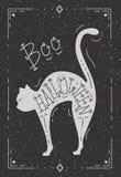 Ejemplo de un gato con la palabra Halloween Foto de archivo libre de regalías