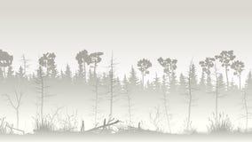 Ejemplo del bosque con el pantano y el deadwood de la hierba Imagenes de archivo