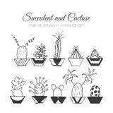Ejemplo del cactus Succulent del vector y sistema dibujado mano de los cactus En plantas de la puerta en potes Foto de archivo