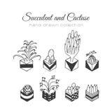 Ejemplo del cactus Succulent del vector y sistema dibujado mano de los cactus En plantas de la puerta en potes Imagen de archivo