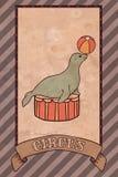 Ejemplo del circo del vintage, sello Foto de archivo libre de regalías