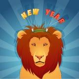 Ejemplo del concepto del león del animal salvaje en invierno Imágenes de archivo libres de regalías