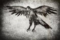 Ejemplo del cuervo con textura Imagen de archivo libre de regalías