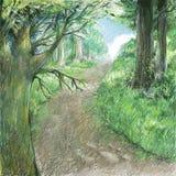Ejemplo del dibujo del color del arte del paisaje de la naturaleza Camino natural con la escena forestBeautiful salvaje ilustración del vector