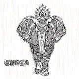 Ejemplo del elefante indio del vintage del vector Imagen de archivo libre de regalías