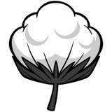 Ejemplo del flor del algodón ilustración del vector