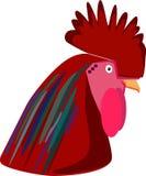 ejemplo del gallo Imagen de archivo libre de regalías