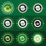 Ejemplo del icono del ganja del cáñamo de la marijuana Foto de archivo libre de regalías