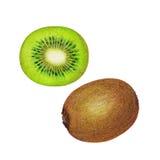 Ejemplo del kiwi Fotos de archivo