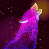 Ejemplo del lobo del garabato Fotografía de archivo