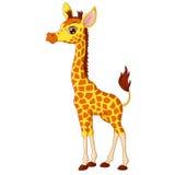 Ejemplo del pequeño becerro de la jirafa Fotografía de archivo