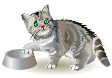 Ejemplo del pequeño gatito hambriento libre illustration