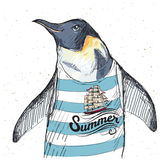 Ejemplo del pingüino del pirata en fondo texturizado en vector Imágenes de archivo libres de regalías