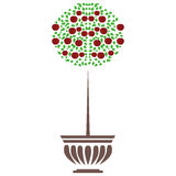 Ejemplo del pote del árbol de la planta en el fondo blanco Ilustración del Vector