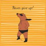 Ejemplo del superhéroe del oso en vector Imagen de archivo libre de regalías