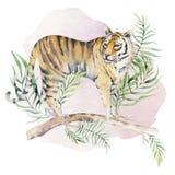 Ejemplo del tigre de la acuarela e impresión tropical de la selva de las hojas del paraíso del verano Planta de la palma y o aisl libre illustration