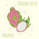 Ejemplo del vector con la imagen de la fruta del dragón stock de ilustración