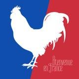 Ejemplo del vector de Francia con colores franceses y el gallo de la bandera Imagen de archivo