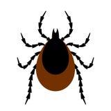 Ejemplo del vector de insecto de la señal Imagen de archivo