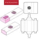 Ejemplo del vector de la caja plantilla del paquete libre illustration