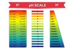 Ejemplo del vector de la carta de la escala del pH Imagen de archivo