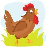 Ejemplo del vector de la gallina de la historieta Imagenes de archivo