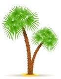 Ejemplo del vector de la palmera Fotografía de archivo libre de regalías
