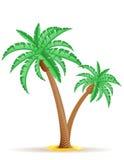Ejemplo del vector de la palmera Foto de archivo