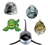 Ejemplo del vector de las cabezas del animal de mar libre illustration