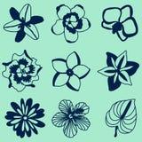 Ejemplo del vector de las flores tropicales fijadas Imagen de archivo libre de regalías