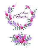 Ejemplo del vector de las flores violetas y rosadas Fotos de archivo libres de regalías