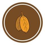 Ejemplo del vector de las hojas en fondo marrón EPS 10 imágenes de archivo libres de regalías