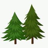 Ejemplo del vector de los árboles de pino Árbol conífero libre illustration