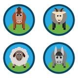 Ejemplo del vector de los animales del campo Caballo, oveja, cabra, un burro Imagenes de archivo