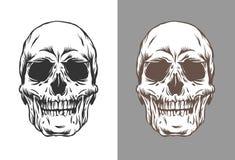 Ejemplo del vector de los cráneos humanos en el grabado de color negro y marrón del estilo aislados en el fondo blanco y gris libre illustration