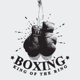 Ejemplo del vector de los guantes de boxeo del vintage Fotos de archivo libres de regalías