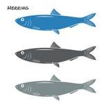 Ejemplo del vector de los pescados de los arenques Fotografía de archivo