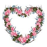 Ejemplo del vector de rosas y del bastidor suculento Corazón floral colorido, estilo de dibujo de la acuarela ilustración del vector
