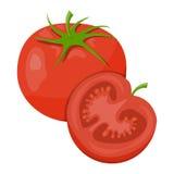 Ejemplo del vector de tomates Stock de ilustración