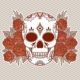 Ejemplo del vector de un cráneo ilustración del vector