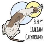 Ejemplo del vector de un italiano durmiente Foto de archivo