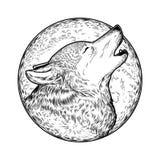 Ejemplo del vector de un lobo del grito Fotos de archivo libres de regalías
