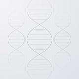 Ejemplo del vector de una molécula de la DNA Imágenes de archivo libres de regalías