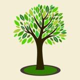 Ejemplo del vector del árbol Imagen de archivo