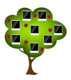 Ejemplo del vector del árbol de familia ilustración del vector