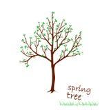 Ejemplo del vector del árbol de la primavera con las hojas Fotografía de archivo