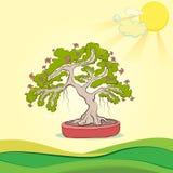 Ejemplo del vector del árbol de los bonsais Imagenes de archivo